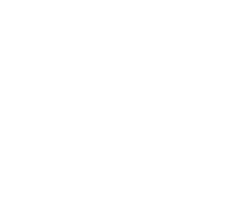 Discovery Saddles